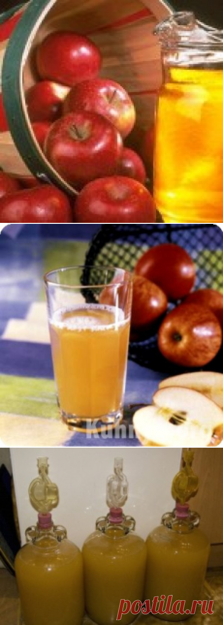 Apple wine in house conditions – the recipe and preparation