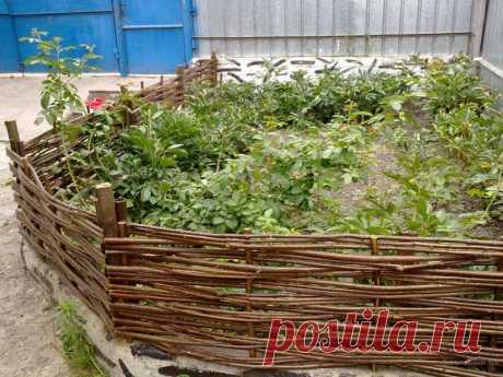 Как сделать плетень на даче своими руками — Садоводка