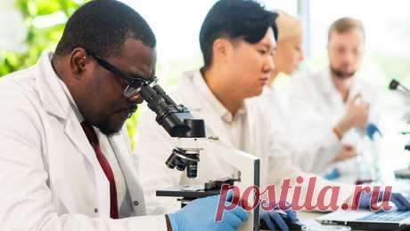 Ученые выявили 12 тысяч мутаций у коронавируса Специалисты исследовали 12 тысяч мутаций коронавируса и выявили, что ни одна из них не увеличивает заразность. Статью опубликовал научный журнал Nature Communications .