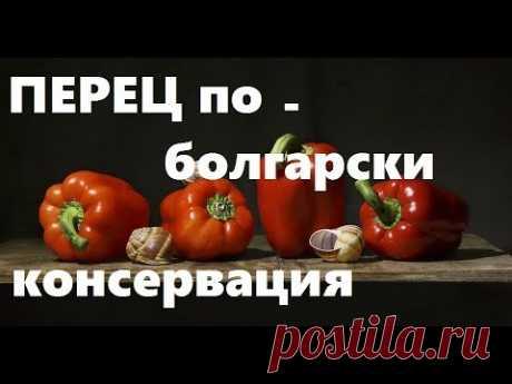 Перцы Фаршированные По- Болгарски.   Высший Пилотаж Консервации