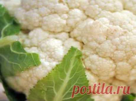 Маринованная цветная капуста на зиму - лучшие рецепты