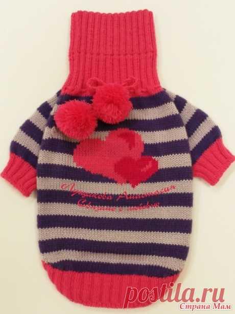 Сердечные наряды для мопса - Вязание - Страна Мам