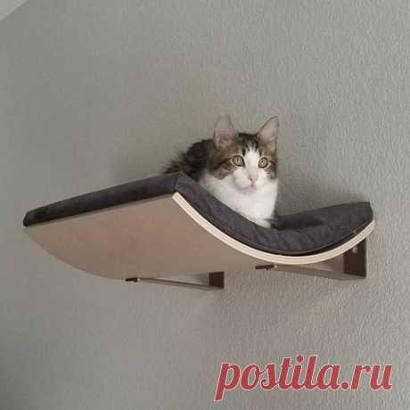Изогнутая настенная кровать для кошки, настенная полка для кошки, кошка, мебель для кошки, лазание, рама для кошки, гамак для котенка, дом, цвет размер на заказ | Дом и сад | АлиЭкспресс
