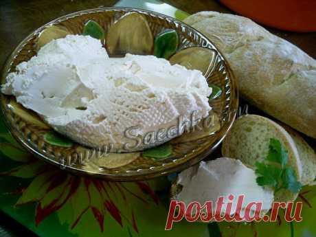 Домашний сыр из кефира и ряженки | Рецепты на Saechka.Ru | Яндекс Дзен