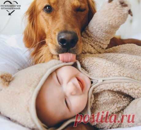 Ребенок — гость в твоем доме. Накорми, выучи и отпусти. © Индийская мудрость