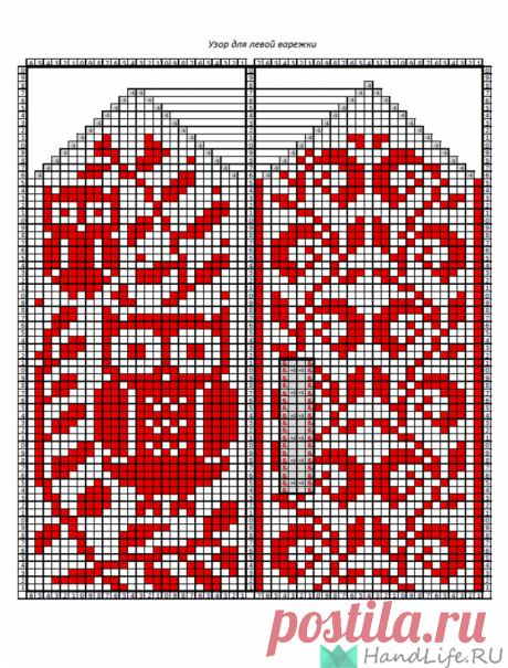 Варежки с совами (жаккардовый узор) / Вязание спицами