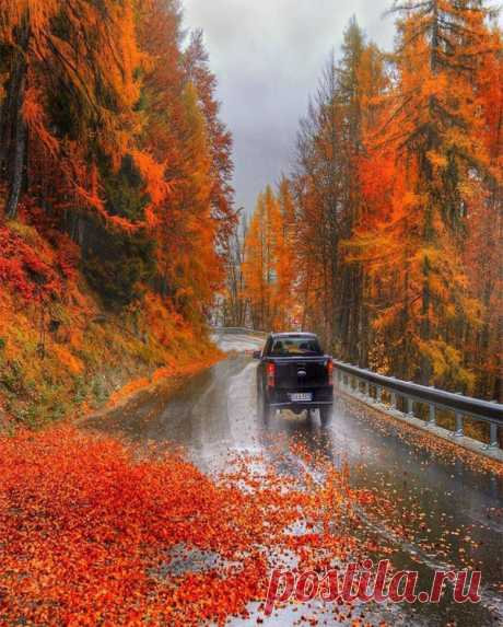 Следующая остановка осень! Пожалуйста, не забывайте свои летние воспоминания!