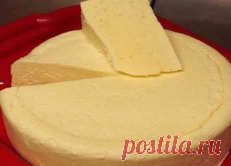 Дорогой сыр? Есть выход! Очень вкусный сыр — сулугуни, готовится легко и быстро дома!!