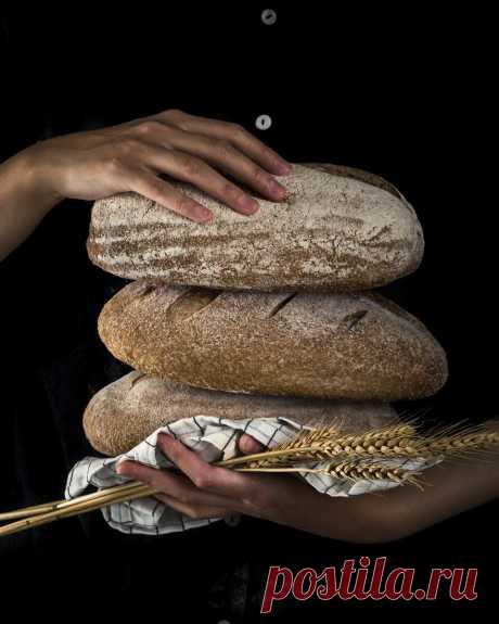 Рецепт знаменитого старинного «рижского» хлеба | Издательство АСТ nonfiction | Яндекс Дзен