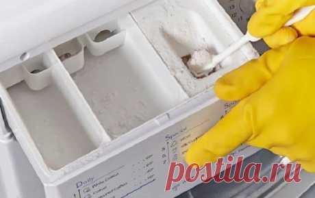 Как убрать плесень в стиральной машине на резине