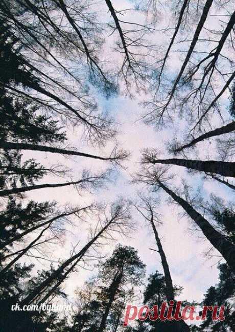 Raise eyes more often up\u000a\u000a#byhand | #шитье | #handmade | #рукоделие | #мастеркласс
