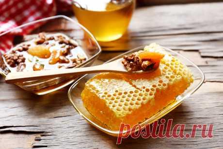 Как определить поддельный мед - запомните 6 основных моментов - Волшебный мир кулинарии 6 основных моментов — как определить поддельный мед . Берите на заметку! Настоящий мёд засахаривается снизу, а не сверху. Капля настоящего мёда, если капнуть ее на запястье, не растекается. Если мёд, налитый в бутылку, перевернуть, то всплывают два пузыря воздуха – сначала первый большой, затем второй маленький. Если переворачивать не бутылку, а банку (литровую или …