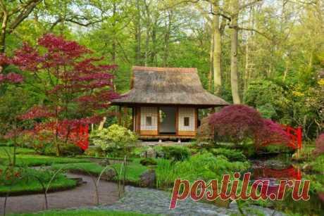 Французский и английский стили садов: выбираем по душе | Идеи дизайна (Огород.ru)