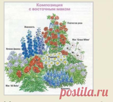 11 схем самых красивых цветников с указанием всех растений. | Для дачников.ру