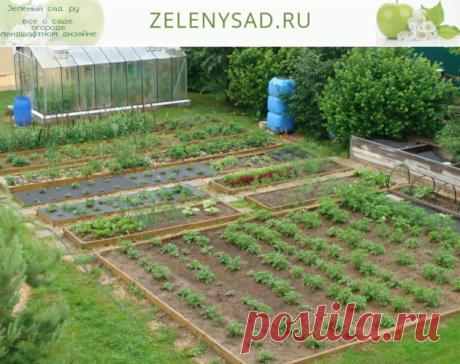 Сайт zelenysad.ru  Все о саде, огороде и ландшафтном дизайне