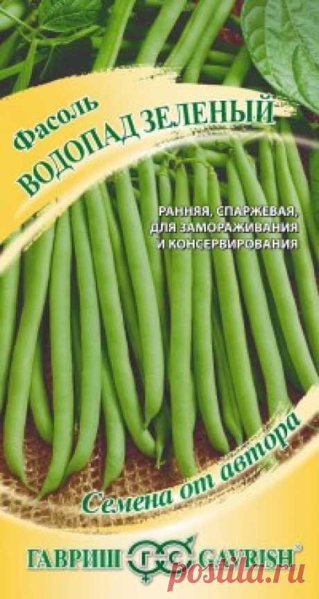 """Семена. Фасоль """"Водопад зеленый"""" (вес: 5,0 г) Всхожесть: 98%. Раннеспелый сорт спаржевой фасоли для домашней кулинарии, замораживания и консервирования. От всходов до технической спелости 44-49 дней. Растение высокорослое, вьющееся. Листья зеленые, морщинистые, среднего размера. Цветки белые. Бобы в технической спелости изогнутые..."""