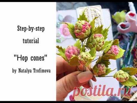 """Tutorial """"Hop cones"""""""