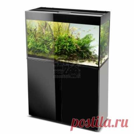 """Товары для рыбок - купить в интернет-магазине """"EuroZoo"""""""
