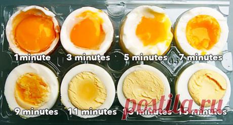Как правильно варить яйца!