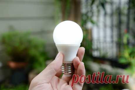 Как выбрать светодиодную лампу в магазине: шпаргалка от CHIP | CHIP