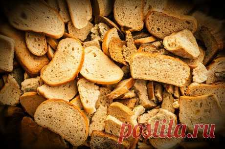 Подкормка для любого овоща из хлеба | Сад и огород | Яндекс Дзен