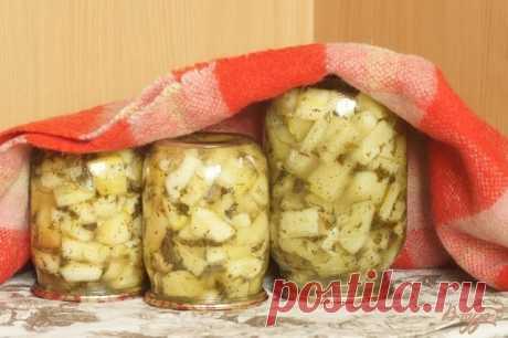 Los calabacines, como los lactarios \u000a3 kg de los calabacines por (los cubos) \u000aEl manojo del hinojo y el perejil \u000a2 zanahorias \u000a0,5 vasos del ajo (sobre el rallador menudo) \u000a2 art. de la cuchara de la sal \u000a1 vaso del azúcar \u000a1,5 vasos del aceite de girasol \u000a1 vaso 9 %-s' vinagre \u000a1 art. la cuchara del pimiento negro molido \u000aTodo poner en la cacerola grande, mezclar y dejar para 3 horas. Luego exponer por los bancos y esterilizar (1 l los bancos - 15-20 minutos), luego envolver y arropar antes del enfriamiento completo. \u000aQué aproveche!