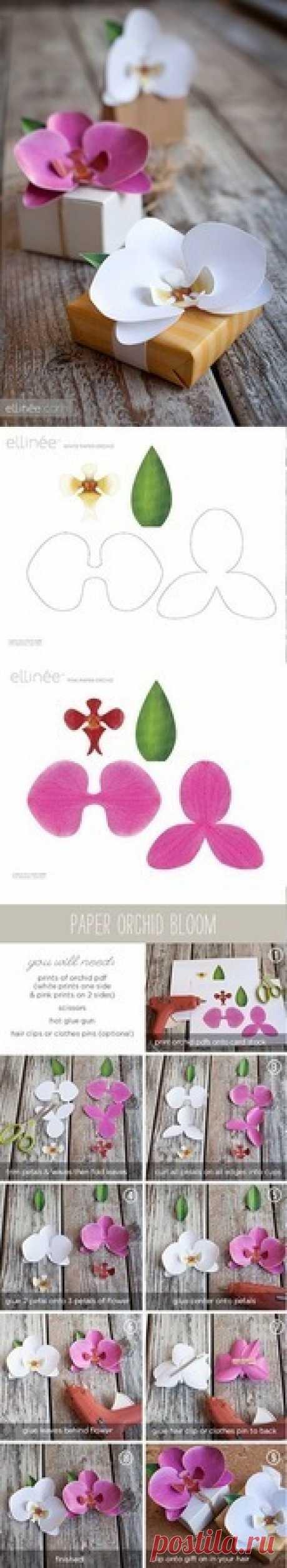(+1) Выкройки для цветов из ткани, кожи, фоамирана