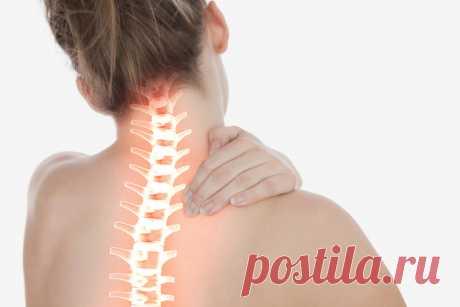 Создаем мышечный корсет и забываем об остеохондрозе