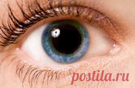 Точки перед глазами могут говорить о скорой слепоте - Медицина 2.0
