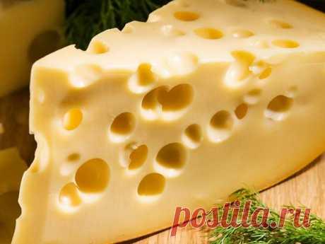 Сырная тарелка — Советы со смыслом