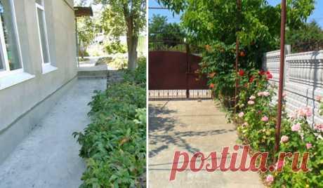 Como correctamente y cubrir firmemente con el hormigón el patio por las manos