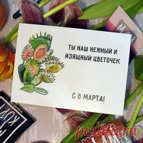 Пуси-пуси юмор для девушек и женщин. Подборка прикольных картинок и фото №ofigennaja-10520312112019 | Офигенная