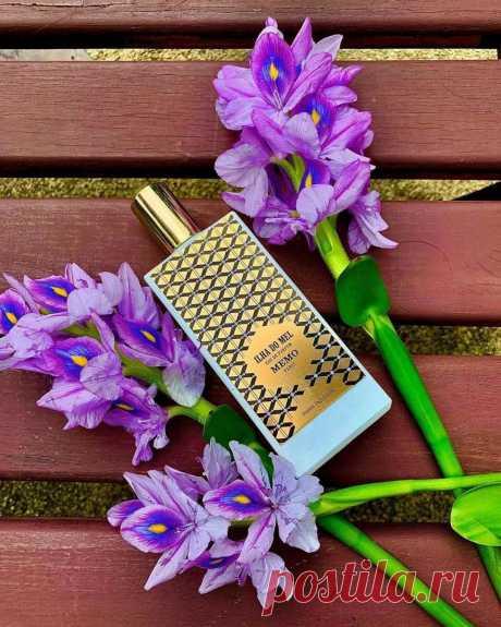7 цветочных ароматов, которые подарят вам магнетический шлейф и комплименты окружающих | Аромат твоего тела | Яндекс Дзен