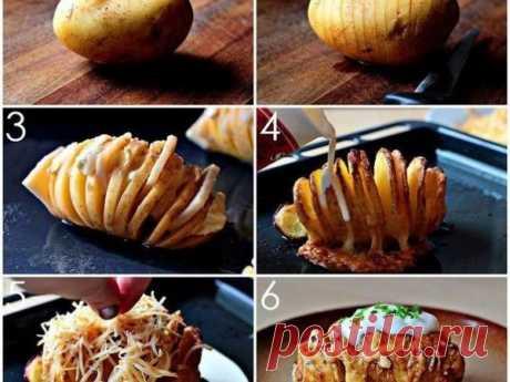 Картошка-гармошка с салом и сыром