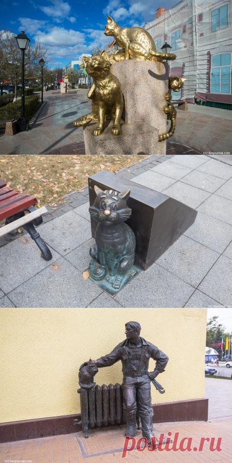 Памятники котикам из разных городов   Уникальная Россия   Яндекс Дзен