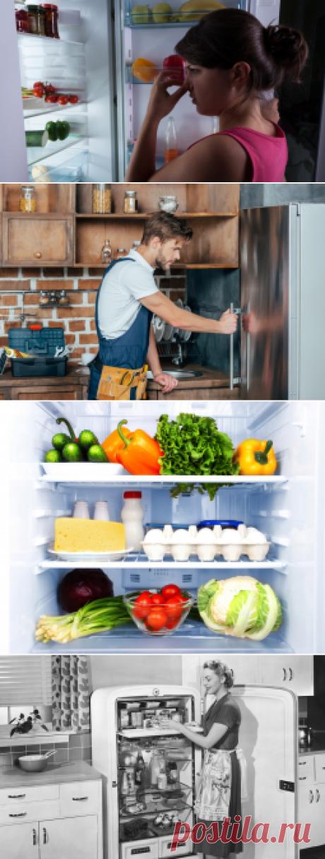 Как удалить запахи в холодильнике? | Дом и семья