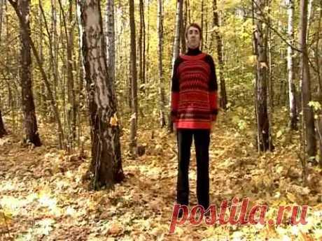 УПР № 1--ЛАДОШКИ--Дыхательная гимнастика Стрельниковой от всех болезней | Bodymaster О спорте и фитнесе | Яндекс Дзен