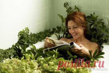 Горчичные ванны Ванны – это самое излюбленное и весьма эффективное средство для похудения. Правильно подобранная и приготовленная ванна станет отличным дополнением к любой диете, поможет быстрее избавиться от лишнего...