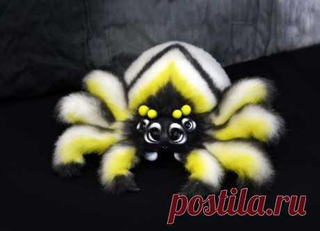 Новый паук. В наличии и ищет дом. Пишите в сообщения сообщества или https://vk.com/id82235979