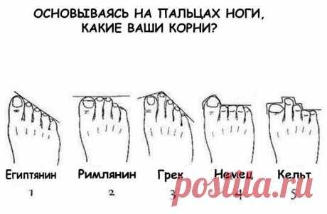 По расположению пальцев ног определяем национальность