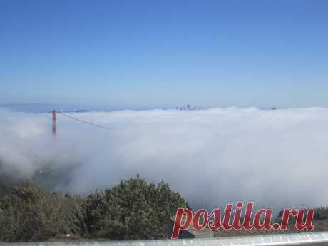 США Калифорния Туман