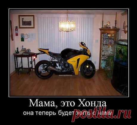 мама это хонда и теперь она будет жить с нами))))