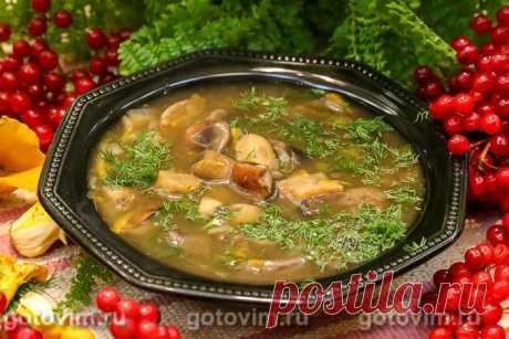 Суп из подосиновиков . Рецепт с фото В суп из свежих подосиновиков я не добавляю картошку, чтобы не перебивать овощами яркий аромат лесных грибов. Не бойтесь, что суп получится слишком жидким. Во-первых, этого не случится, если вы не будете жалеть грибы и положите не меньше 10 штук на 2 л воды. Во-вторых, в самом конце приготовления, добавьте в бульон обжаренную до кремовости муку. Сами увидите, как консистенция супа изменится, особенно, если дать ему настояться.