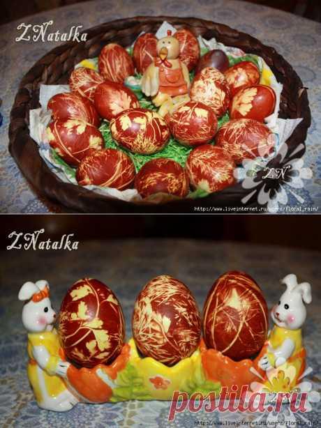 Крашеные яйца с рисунками из листочков укропа и петрушки | ПолонСил.ру - социальная сеть здоровья