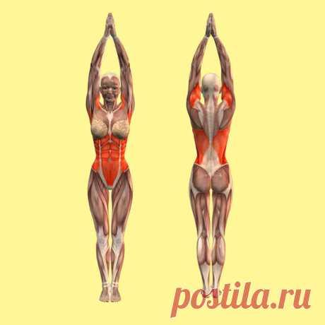 Вы удивитесь! Одно простейшее движение оздоровит тело!   Всегда в форме!