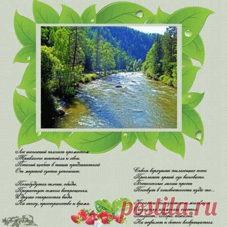 Лес июньский пьянит ароматом… ~ Плэйкасты ~ Beesona.Ru