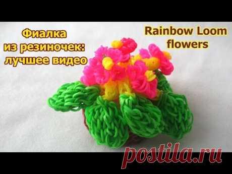 (229) Rainbow Loom flowers. Фиалка из резиночек: лучшее видео - YouTube