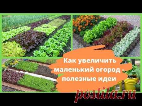 Как увеличить маленький огород - полезные идеи