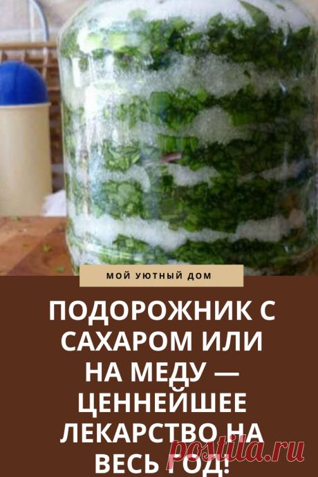 Рецепт приготовления подорожника с сахаром и медом