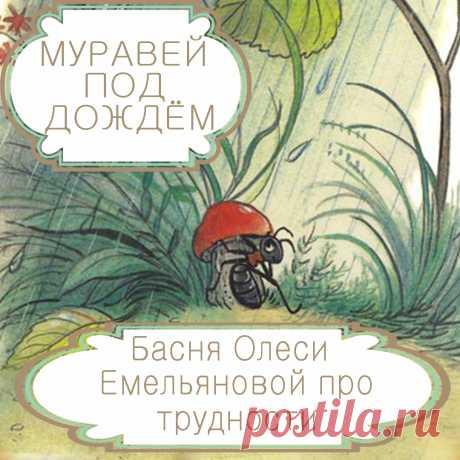 Муравей под дождем  – басня в стихах Олеси Емельяновой про жизненные трудности и счастье. Как говорится, не было бы счастья, да несчастье помогло. И, действительно, нередко большое счастье приходит в жизнь человека только после трудностей и невзгод. Именно такую поучительную и оптимистичную историю расскажет вам эта современная басня в стихах.